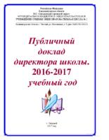 Публичный доклад 2017