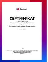 Кариневская И. Л., учитель технологии