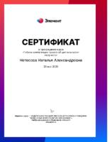 Нетесова Н. А., учитель информатики